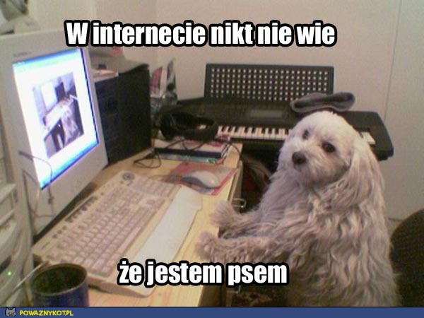 W internecie nikt nie wie że jestem psem