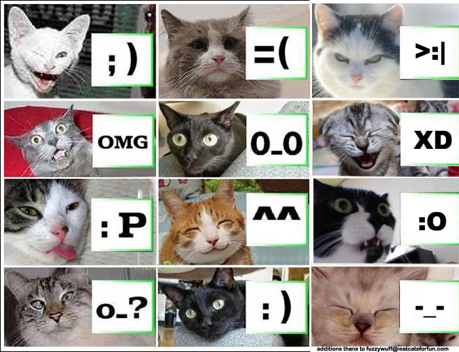 koty-emotikony